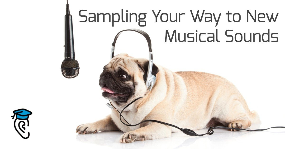 Sampling Your Way to New Musical Sounds