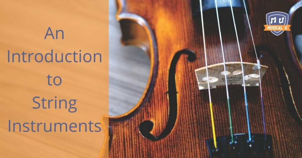 An Introduction to String Instruments
