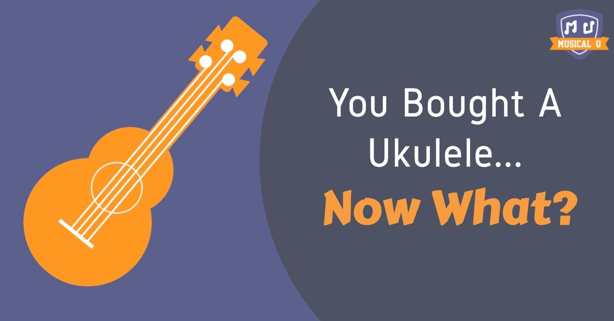 You Bought A Ukulele Now What Musical U